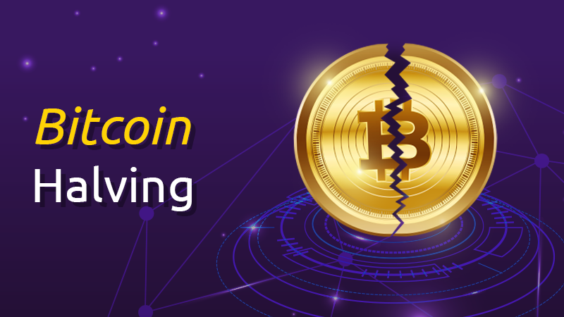 Bitcoin price surges towards the Halving event