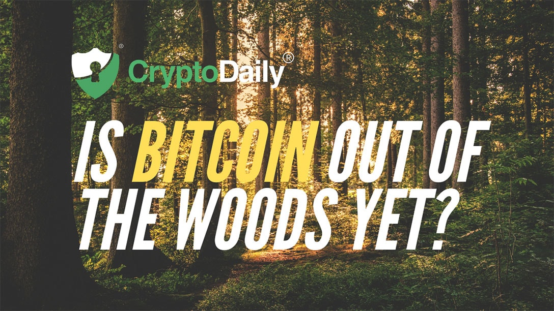 Is Bitcoin (BTC) Out Of The Woods Yet? thumbnail