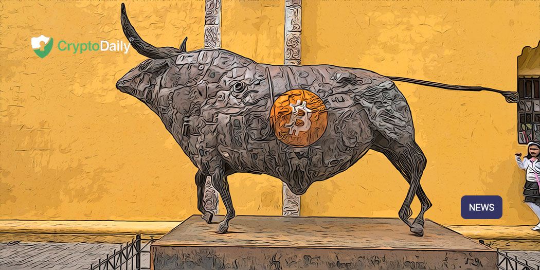 What Will Spark A BTC Bull Run This Year