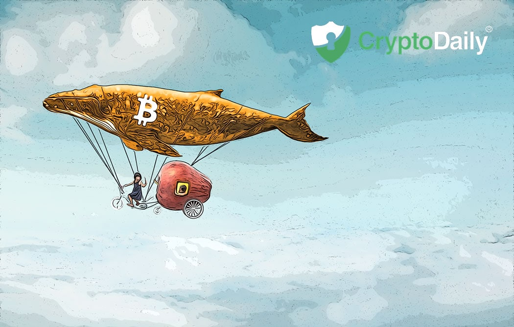 How BTC Price Is Affected By Whales