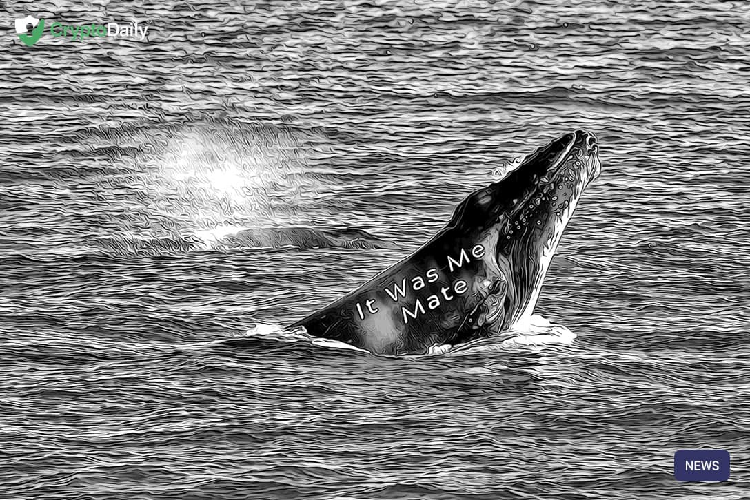 Researchers Claim One Whale Was Behind BTC Hitting $20k